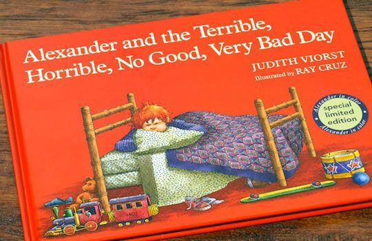 Picture Story Book. This book helps teach children that it is ok to have bad days sometimes and how it can happen to anyone.