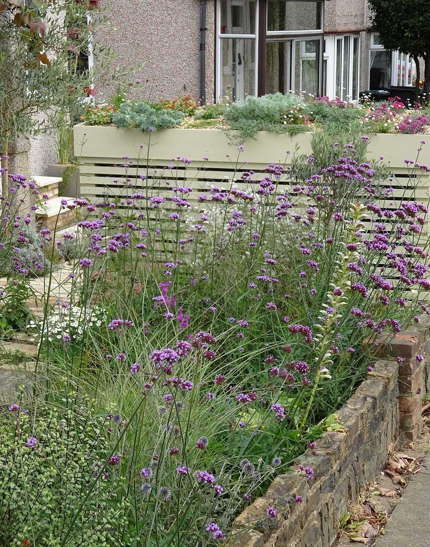 Fenton Roberts Garden Designer Home Page Barnet London Front Gardens Front Garden Design London Garden