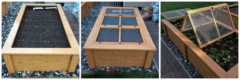 Raised garden bed, cedar, strawberries, screens to keep the animals away.