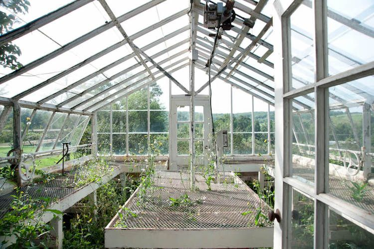 my scandinavian home a greenhouse make over with the frame arc rh pinterest com