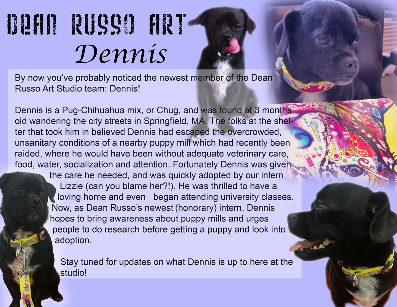 Dennis our NEW intern story ~