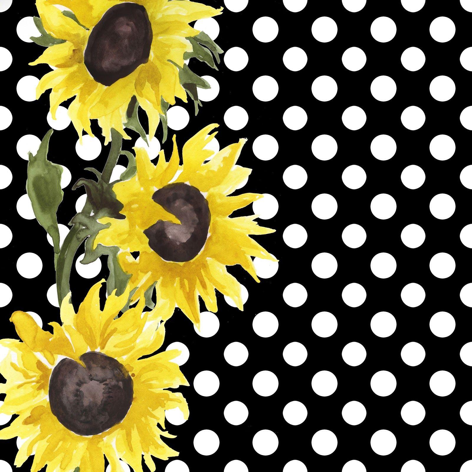 Free Black White Floral Background Patterns Black Background