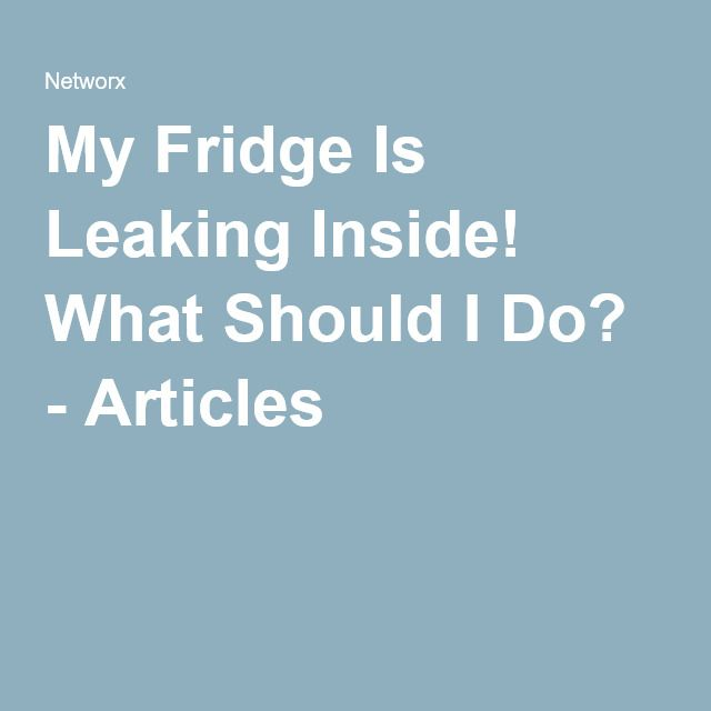 My Fridge Is Leaking Inside! What Should I Do? - Articles
