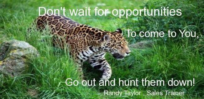 Hunt the opportunities