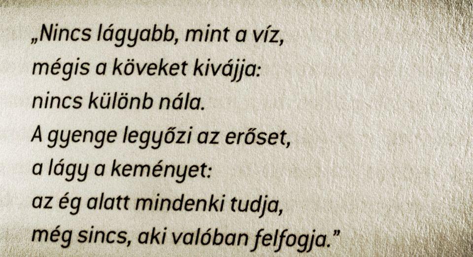 tao te king idézetek Lao Ce   Tao te King Az út és erény könyve idézet | Hungarian