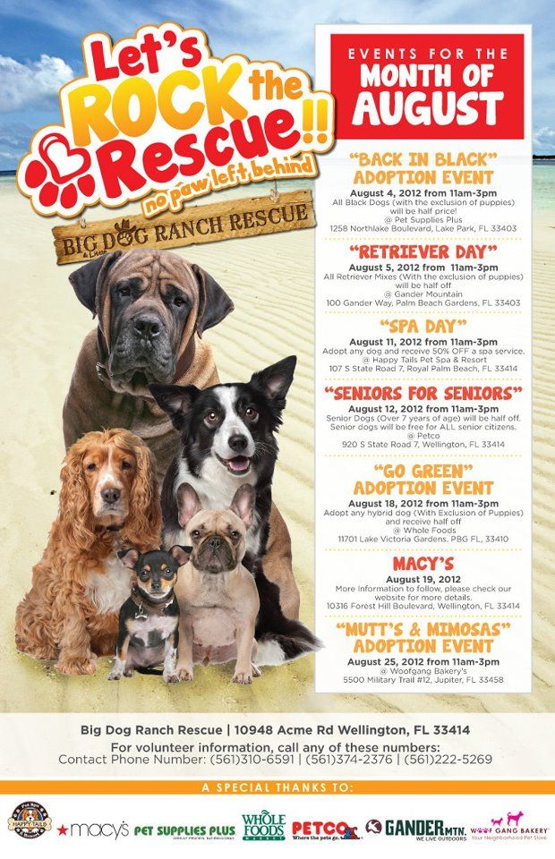 Adoptable Pets Wpb Fl Animal Care Control Click On Picture For More Info Pet Care Animals Home Rescue