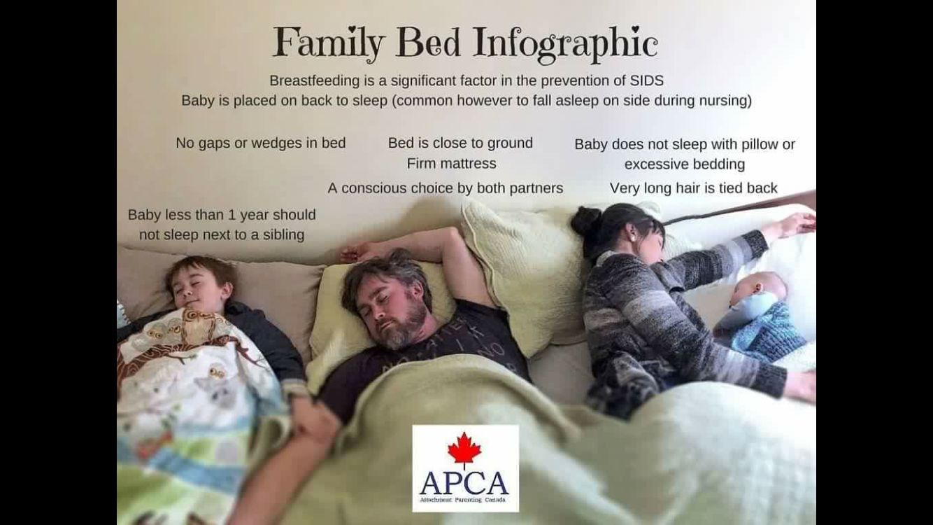 Baby bed fall prevention - Attachment Parenting Canada S Family Bed Infographic
