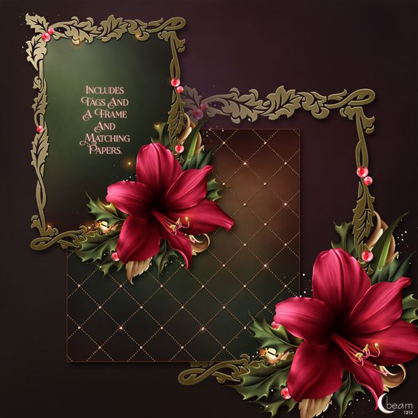Moonbeam's Festive Amaryllis (FS/CU) : Scrap and Tubes Store, Digital Scrapbooking Supplies