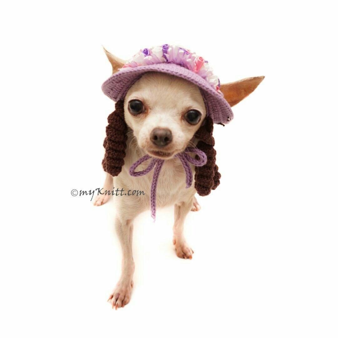 Crochet Chihuahua Sun Hat With Dreadlocks Funny Dog Hat Crochet