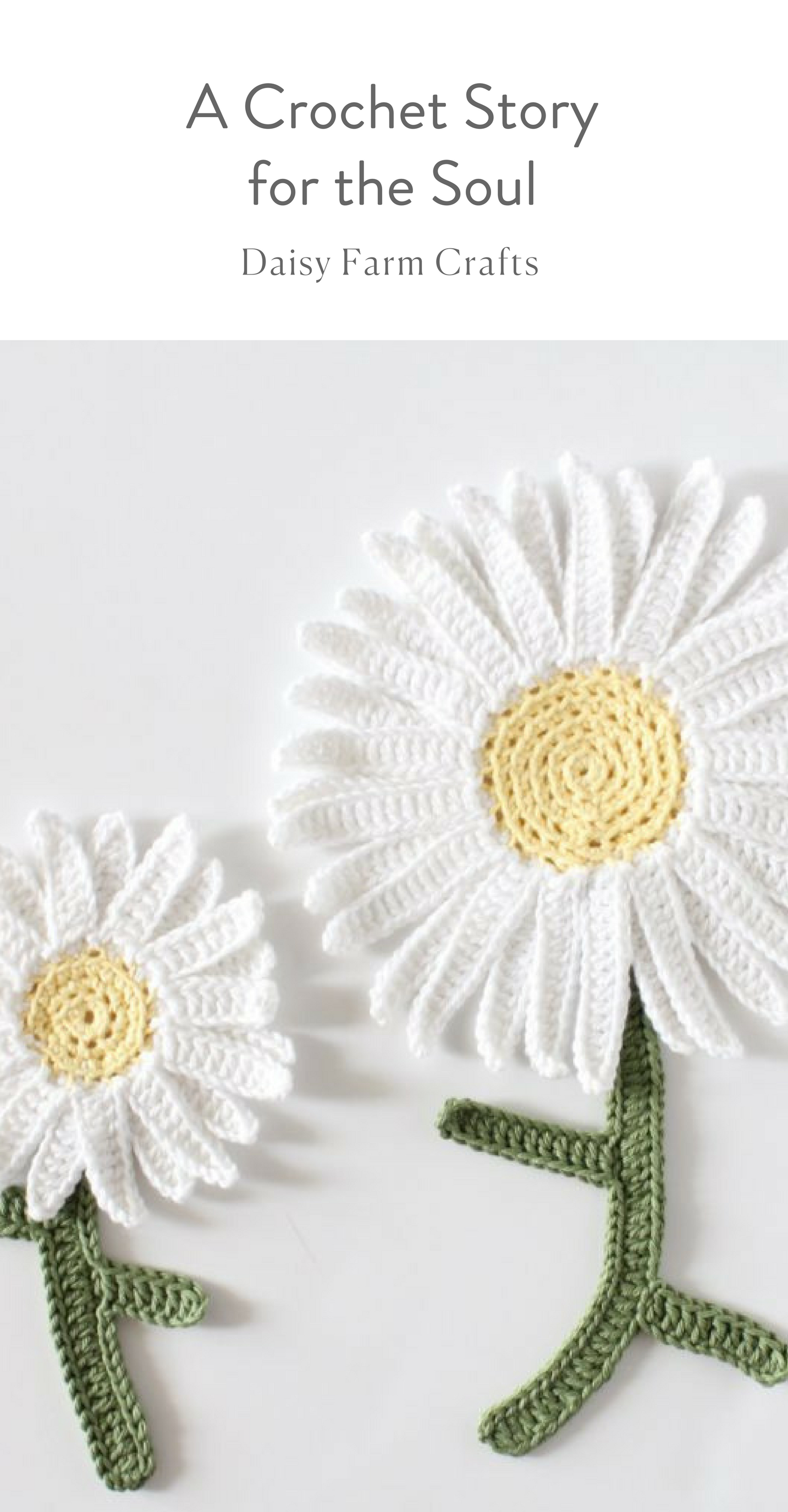 A crochet story for the soul daisy farm crafts blog flori a crochet story for the soul daisy farm crafts blog izmirmasajfo