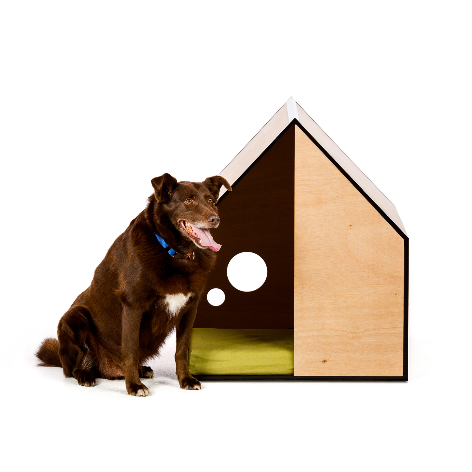 Pin On Dog Kennel Ideas