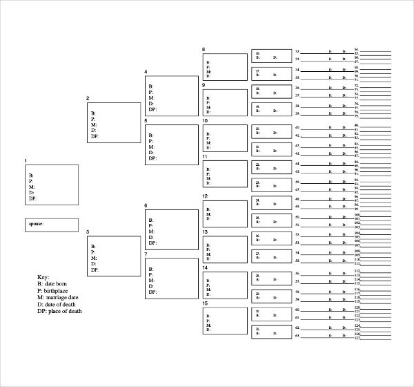 family tree templates free sample example format large