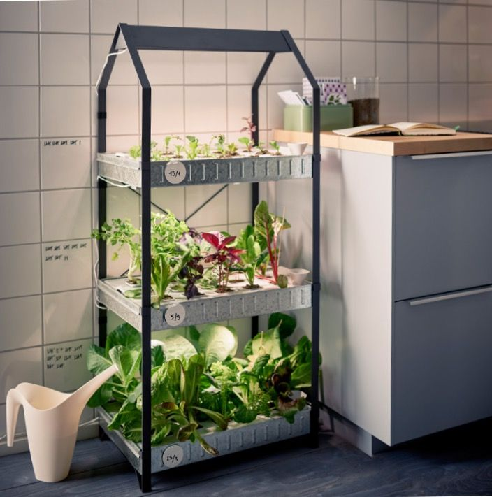 indoor gardening ikea krydda v xer series ikea jardins potager jardinage. Black Bedroom Furniture Sets. Home Design Ideas