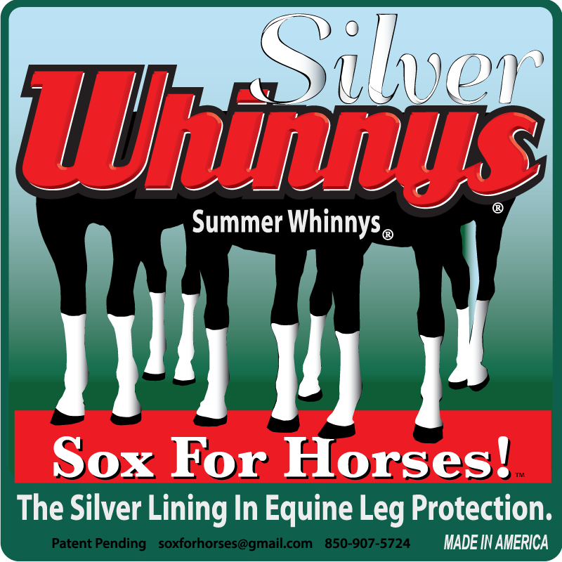 Home Sox For Horses! in 2020