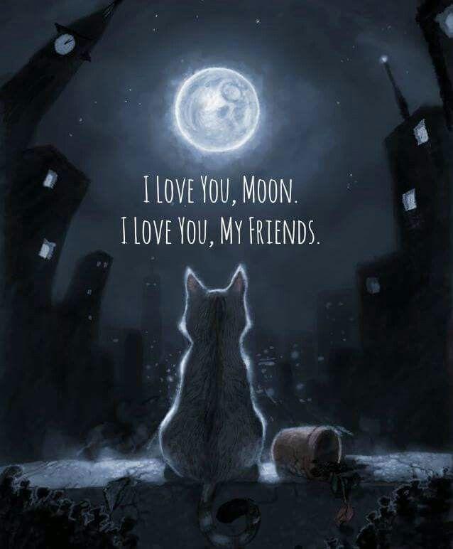 Resultado de imagen para amo la luna
