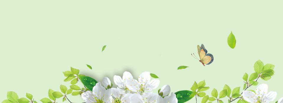 Green Creative Plant Natural Nature Font Watercolor Plants Plant Illustration