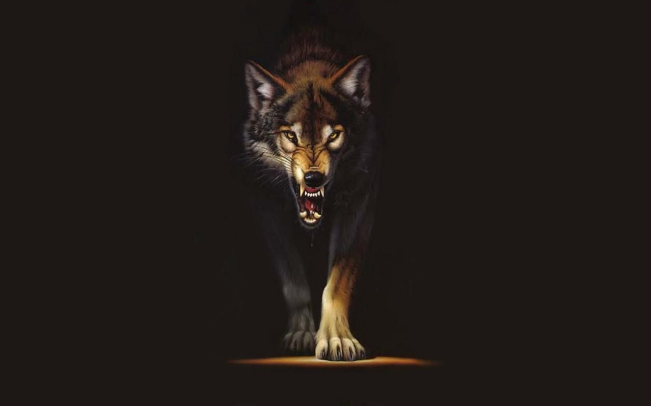 Wolf Wallpaper For Computer Angry Wolf Wolf Wallpaper Black Wolf