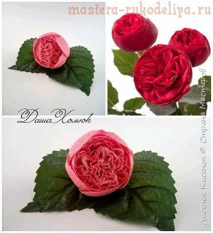 Свит дизайн роза остина мк