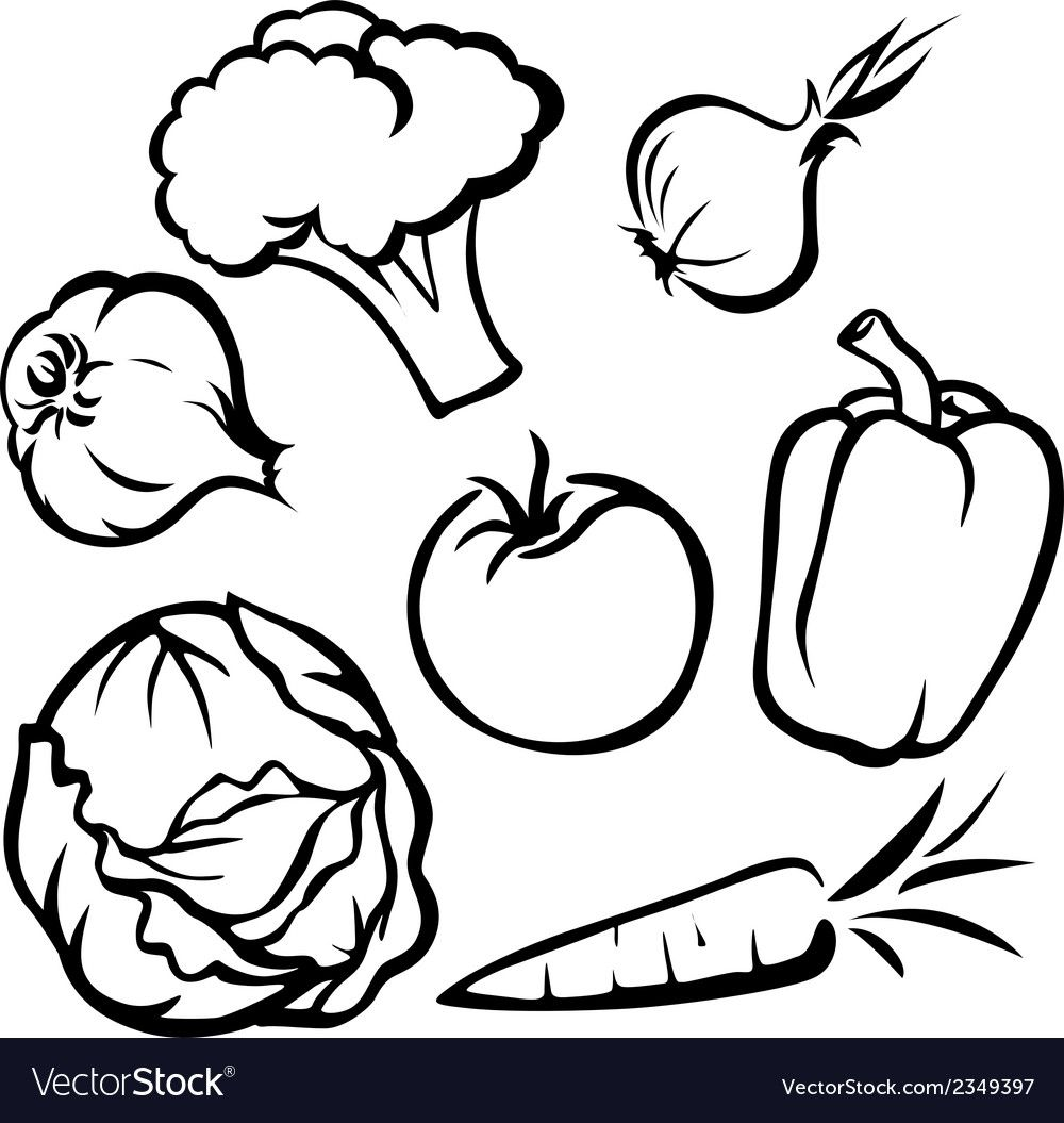 Vegetable Black Outline On White Background Download A Free Preview Or High Quality Adobe Illustrator Ai Black And White Drawing Vegetable Drawing Drawings