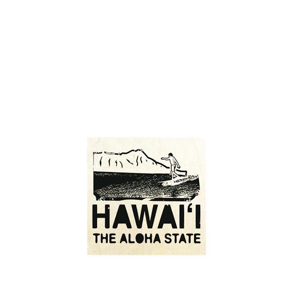 Hawaii The Aloha State 28x36 MUL