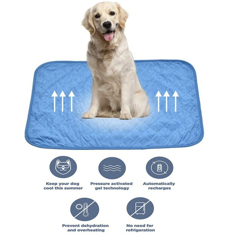 With The Heat Wave Heading Over Australia It Is Important To Make Sure Your Pooch Is Hydrated And Kept Cool Check Sleeping Dogs Sleeping Pads Dog Cooling Mat