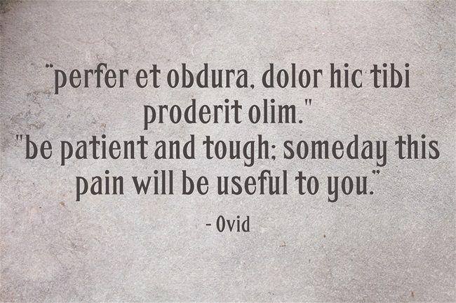"""Citaten Seneca Latijn : """"perfer et obdura dolor hic tibi proderit olim latin"""