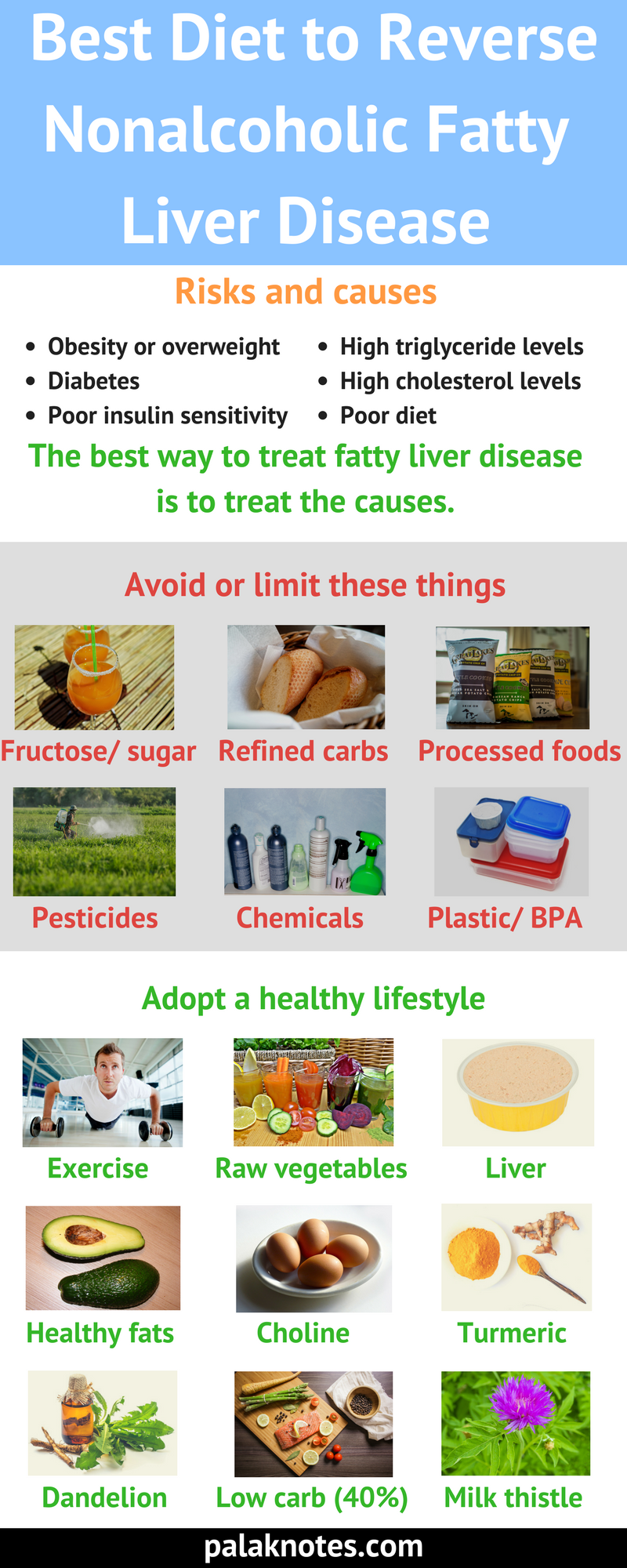 diet to reverse fatty liver disease