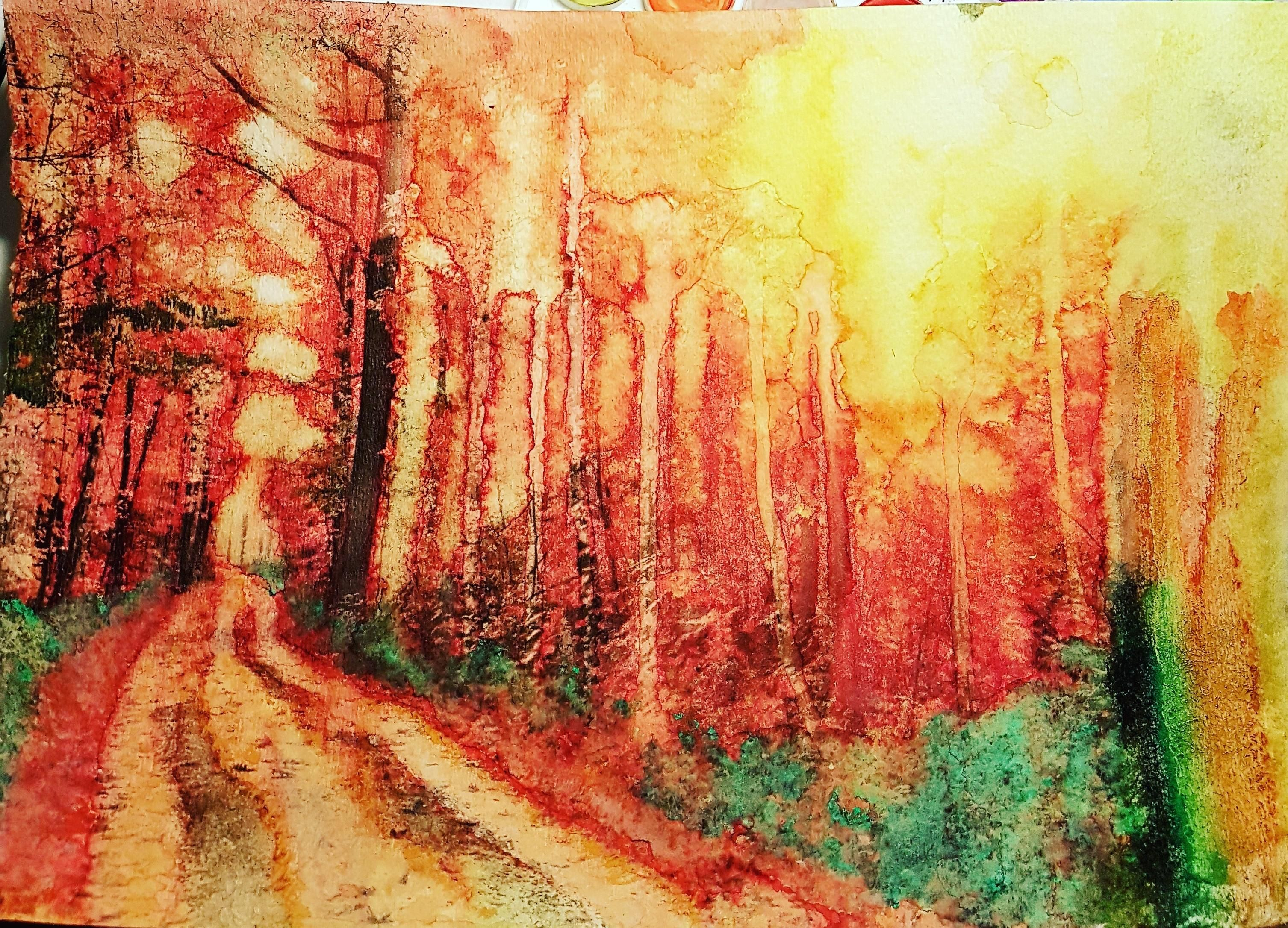 Forest Fire Watercolor 9x12 Elements Of Art Art Watercolor