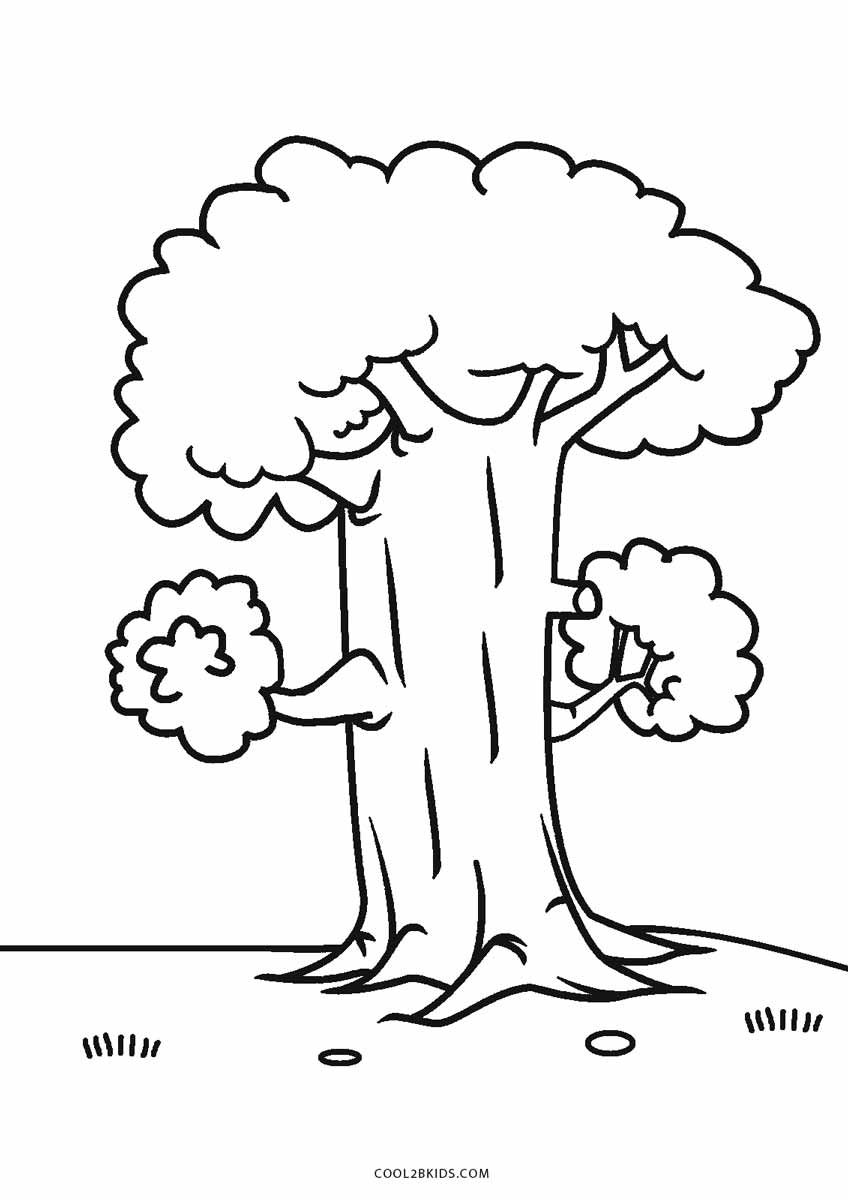 Free Printable Tree Coloring Pages For Kids Cool27bKids, free