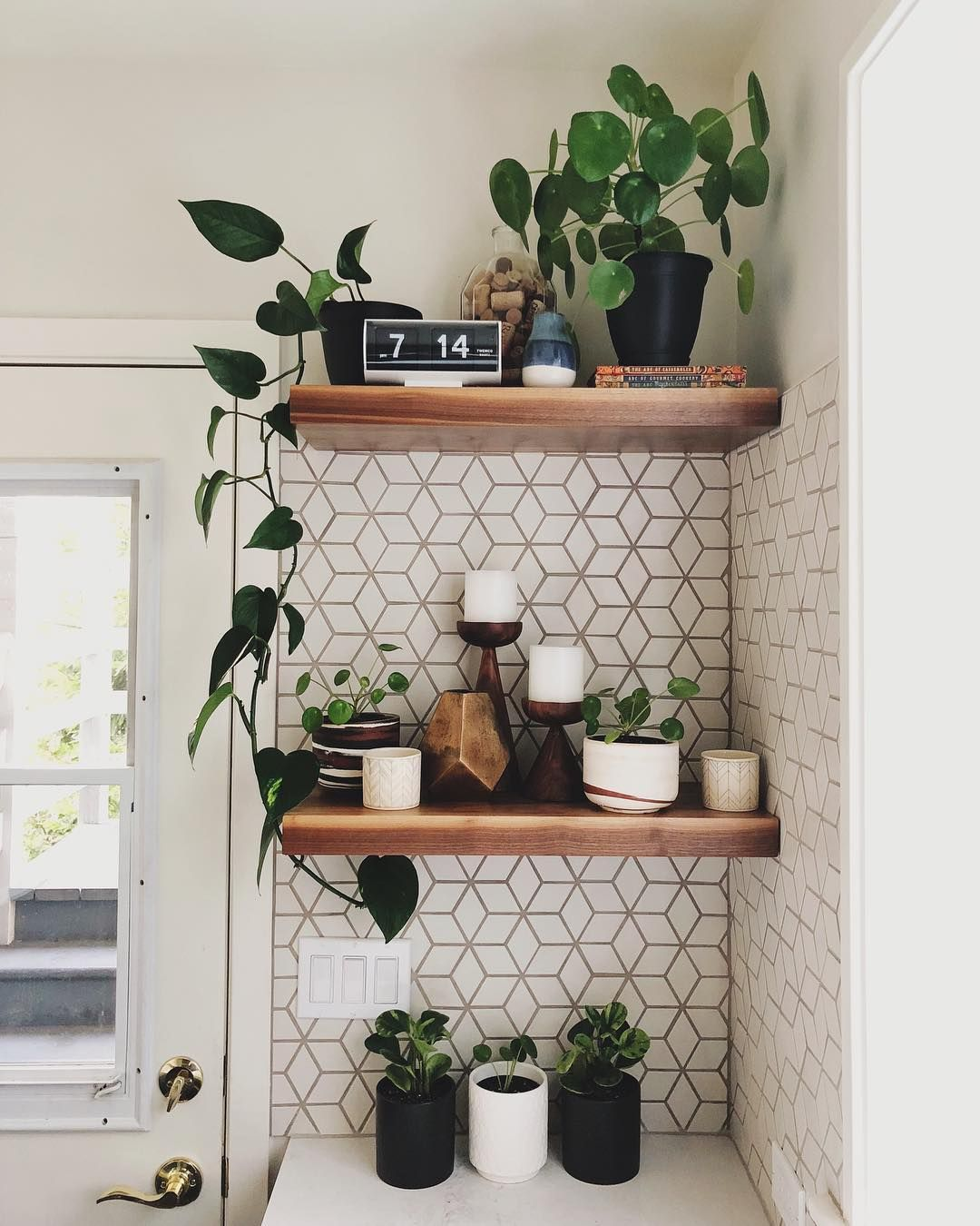 "Edward (Eddy) on Instagram: ""Open shelving is just an excuse to have more plants, right?! Pilea army is slowly growing 🙌🏼🌱 . . . #missionedward #shelfie #urbanjungle…"""