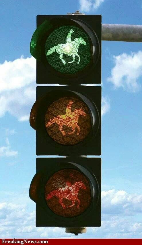 Giddy Up......Texas Traffic Light