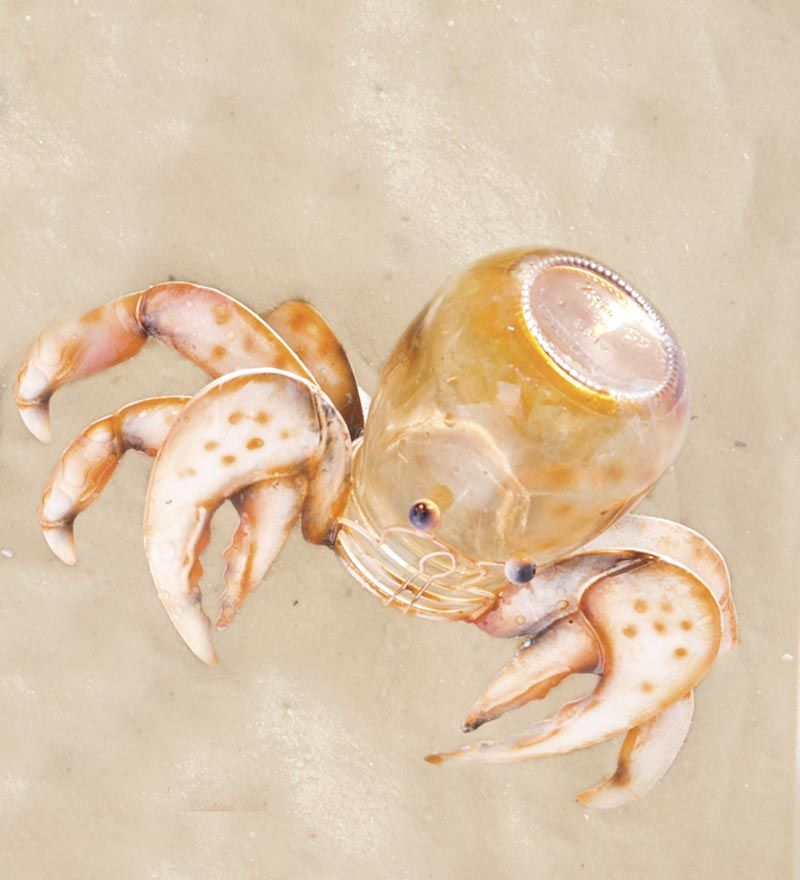 Recycled Jar Hermit Crab - cute as a button!