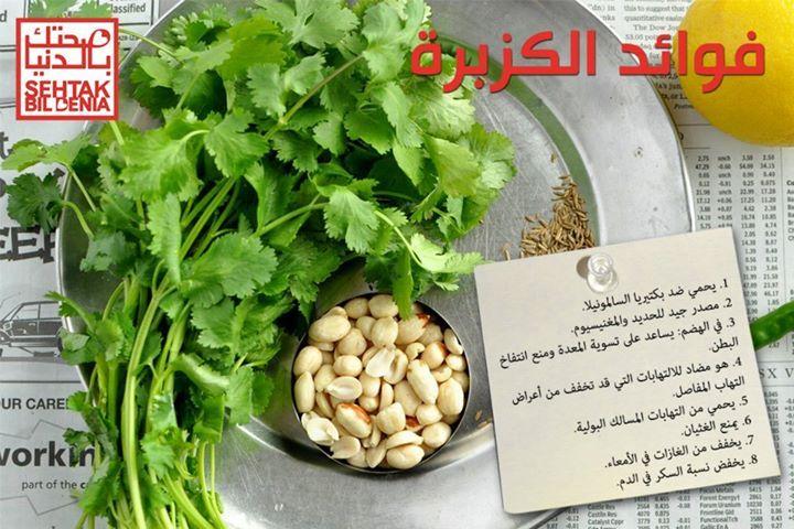فوائد الكزبرة 1 يحمي ضد بكتيريا السالمونيلا 2 مصدر جيد للحديد والمغنيسيوم 3 في الهضم يساعد على تسوية المعدة ومنع انتفاخ Brussel Sprout Sprouts Spinach