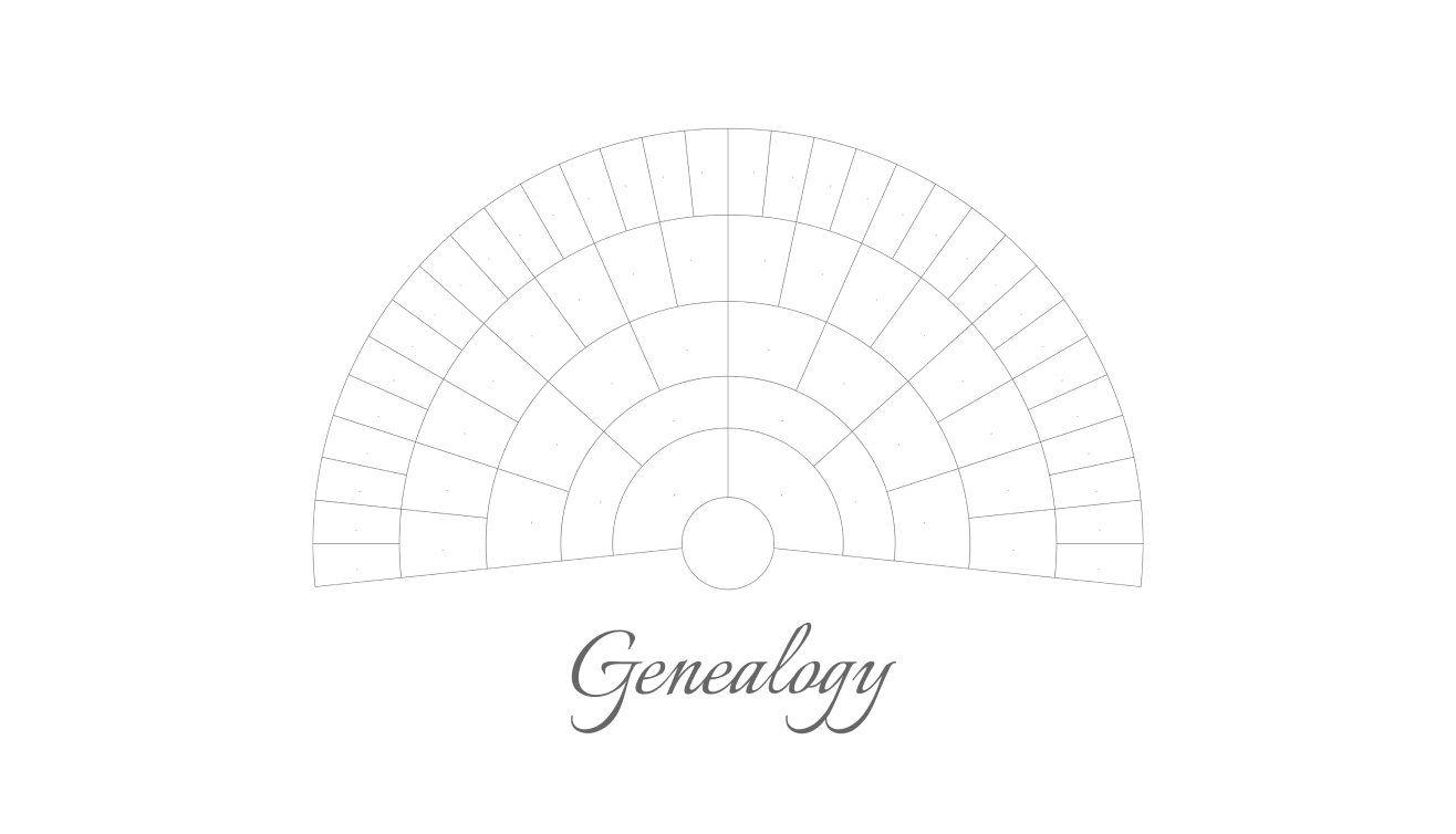 A Blank Family Tree: Genealogy Decal   Family tree maker ...