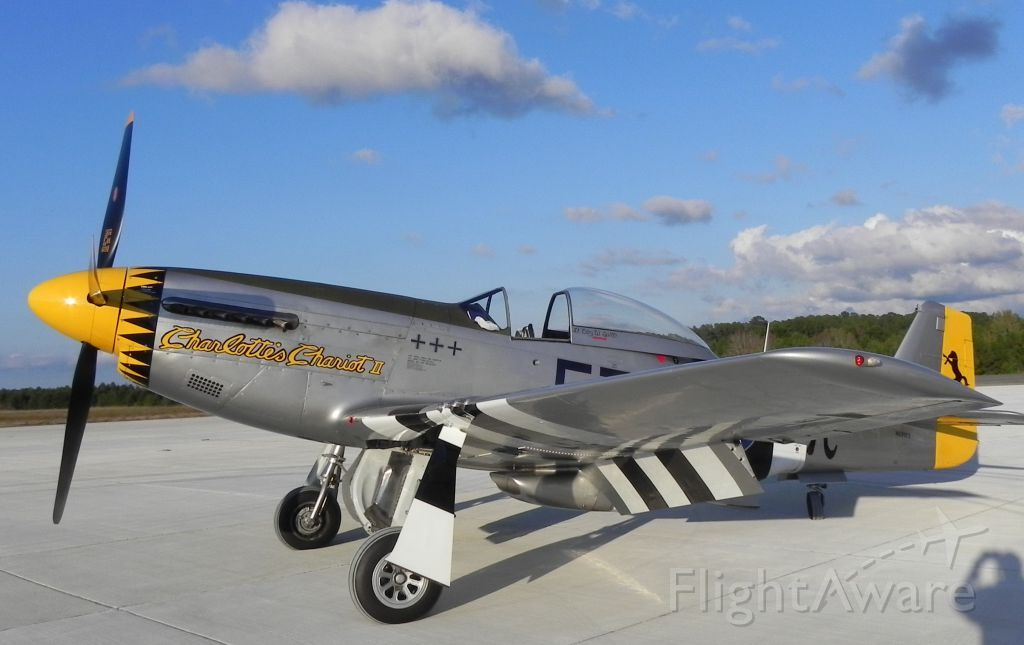 Photo of P51D (N251CS) ✈ FlightAware