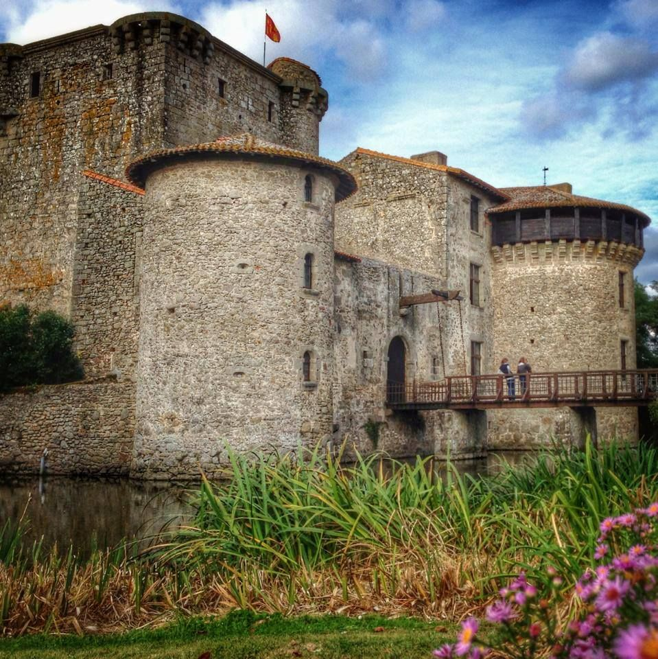 Château de Tennessus, Deux Sèvres, France