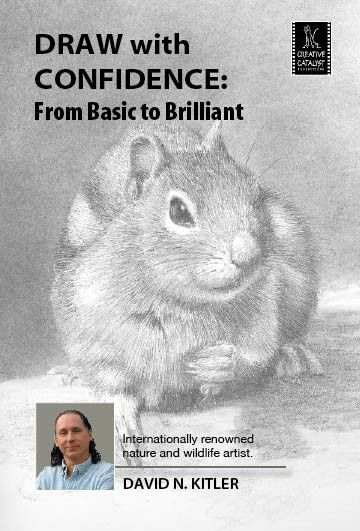 Draw with Confidence: From Basic to Brilliant with David Kitler. Learn more at http://ccpvideos.com/products/dnk1d