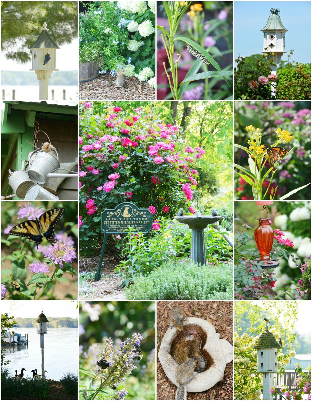 Garden for wildlife month create a wildlife habitat in