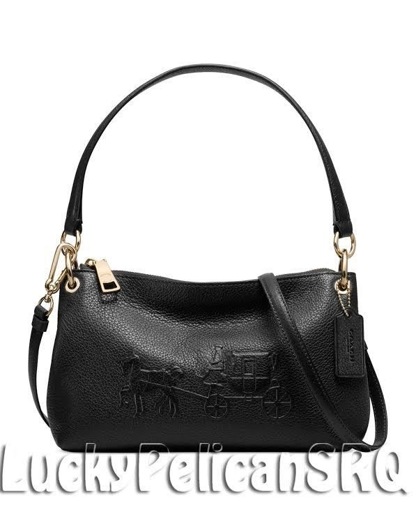 70414b5ed4a9 I usually do not like the styles of purses Coach makes
