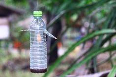 trampa de vinagre para moscas