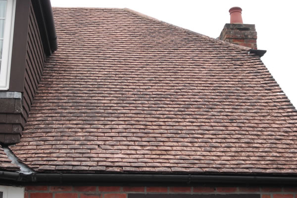 How To Clean Moss From House Roof House Roof Roof Roof Cleaning