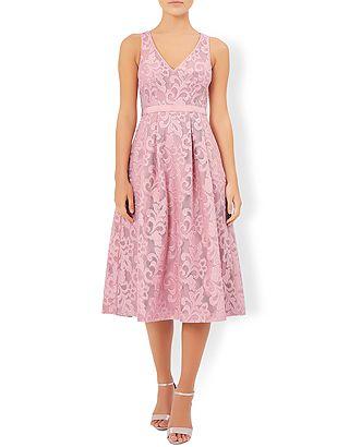 Delphinium Lace Dress