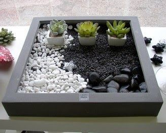 jardines de cactus y suculentas mini jardin zen terraium pinterest zen cactus y suculentas. Black Bedroom Furniture Sets. Home Design Ideas