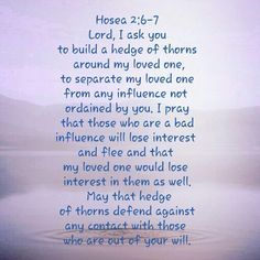 hedge of thorns prayer - Google Search | Favorite quotes