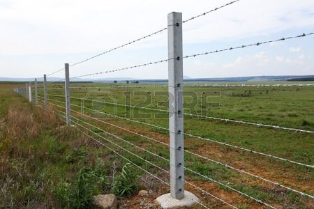 Farm Fence With Concrete Fencing Posts And Barbed Wire Strands Concrete Fence Posts Concrete Fence Concrete Posts