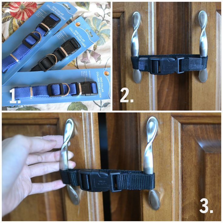 Baby Proof Cabinets Using Dollar Store Dog Collars Pin