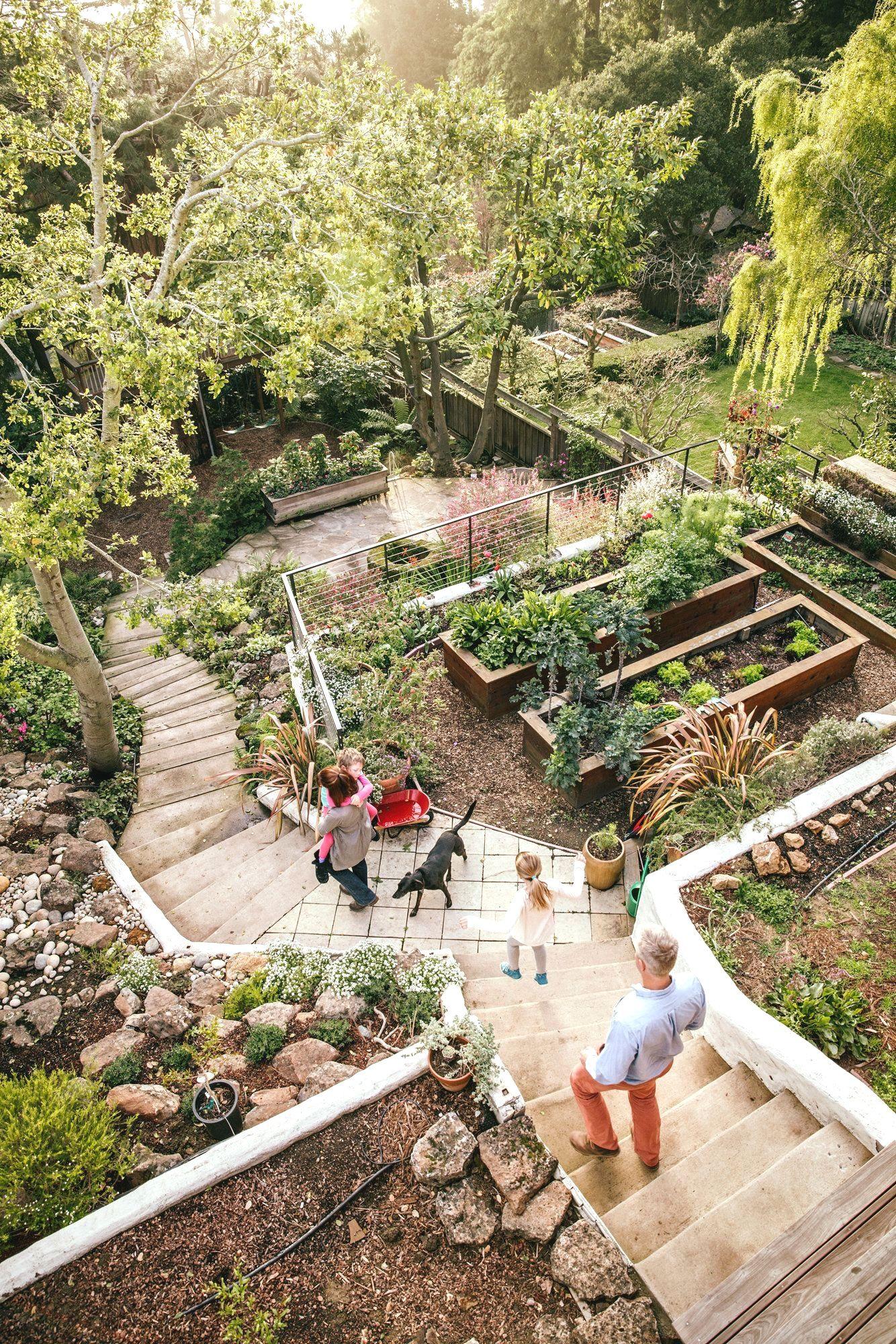 Japanese Gardening Sloped Garden Sloped Backyard