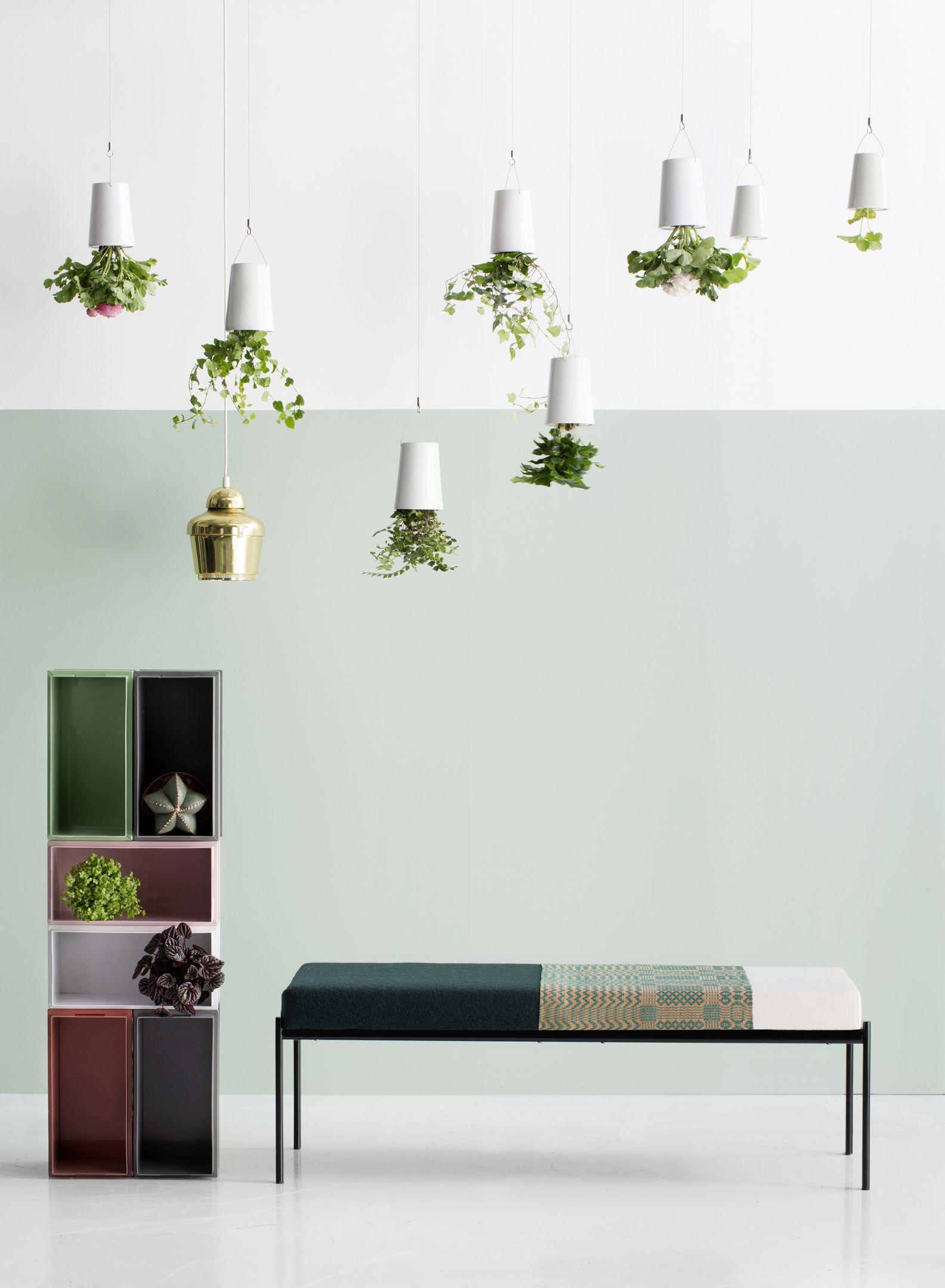 Exceptional Interior Stylist