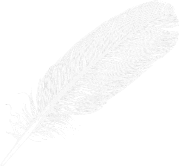 Large White Transparent Feather Png Clipart Clip Art Large White Clip Art Borders