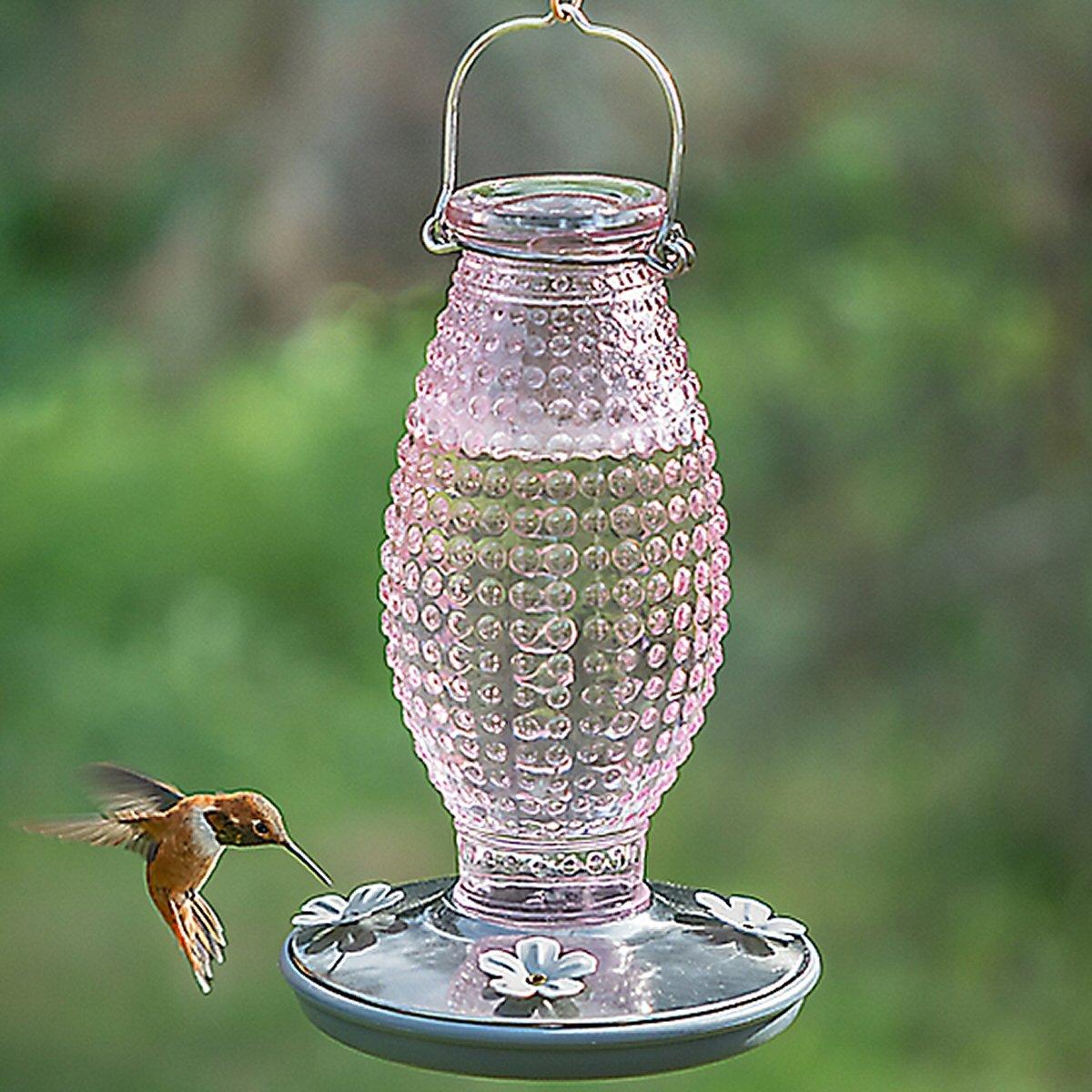 Cranberry Hobnail Vintage Hummingbird Feeder Glass